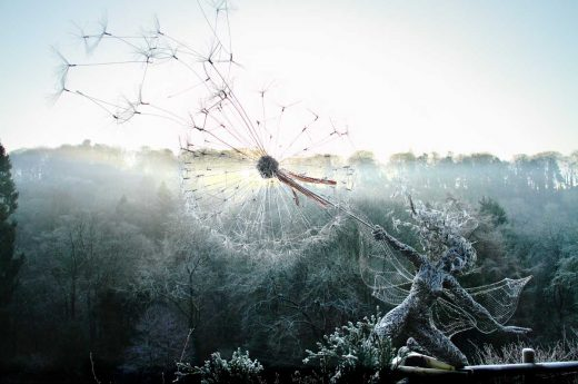 Robin Wight,Wishes-misty-morning, acciaio